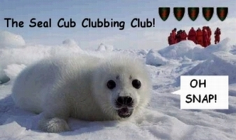 The Seal Cub Clubbing Club
